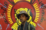SL_Soldier_bg_LTTE_Logo